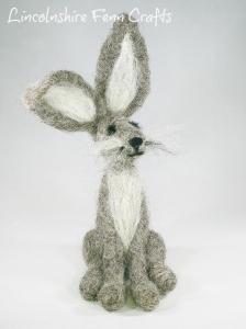 grey hare final 3717